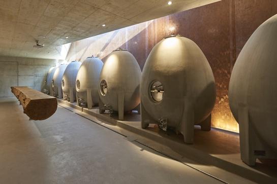 Weinfässer aus Beton im Weingut am Stein